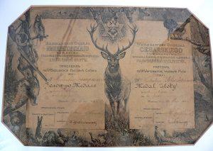 Złoty medal dla terrierki Krysi. Rok 1909.